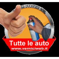 Spray per Tutte le auto  (tua codifica) personalizzato